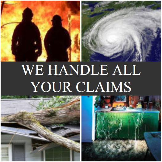 Insurance Public Adjuster